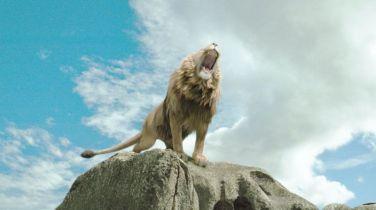 aslan-roaring